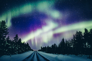 Aluminium Prints Northern lights Colorful polar arctic Northern lights Aurora Borealis activity in snow winter forest in Finland
