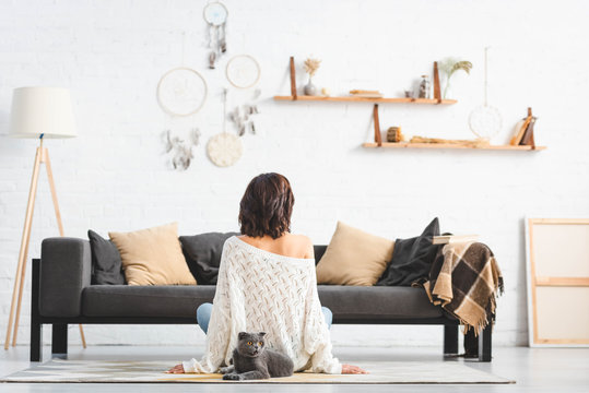 back view of woman sitting on floor with grey cat in living room with dream catchers