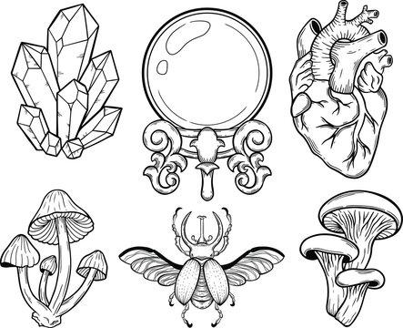 crystal, mushroom, bug, heart, crystal ball, vector hand drawn illustration tattoo sketch style isolated on white