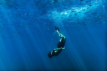 Foto op Canvas Nice Scuba diver into the mediterranean sea with flocks of fish over head, near Nice, cote d'azur, south France