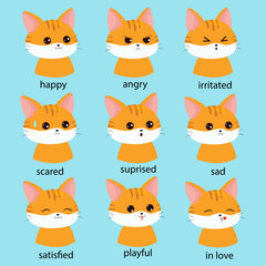 Cute kawaii set of cat faces with different expressions. Educational cards for kids. Learn emotions. Vector cartoon character.