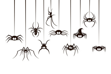 black collection of various spiders isolated on white background