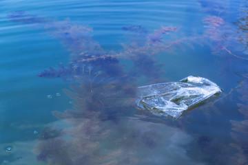 floating plastic bag garbage on ocean water with green algae underwater environmental pollution background