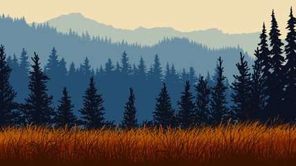 Horizontal illustration of grassy meadow with coniferous forest hills.