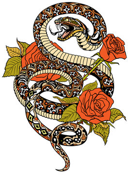 snake coiled round the roses. Angry dangerous serpent and flowers. Tattoo style or t-shirt design vector illustration
