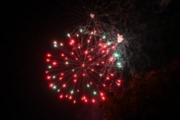Fireworks pyrotechnics