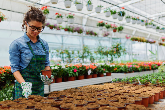 Young woman working in beautiful colorful flower garden greenhouse