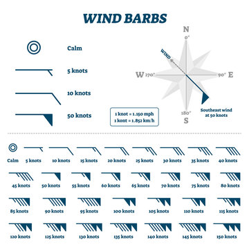 Wind barbs vector illustration. Flat air movement and direction measurement