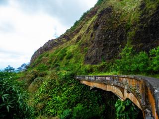 vieille route dans la nature