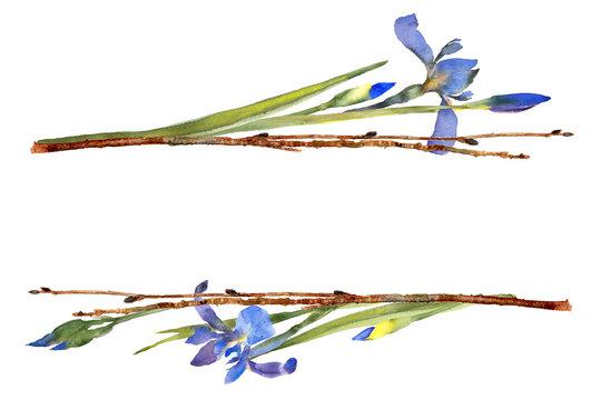 purple iris woodland frame