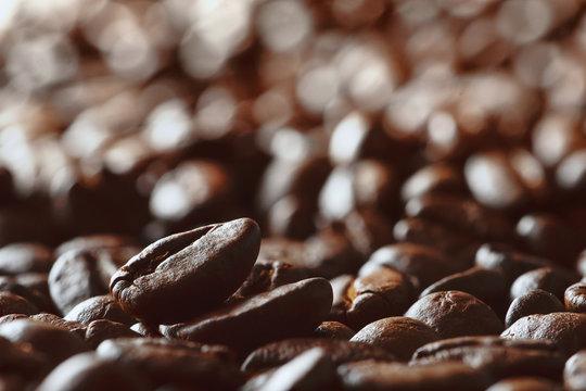 bevergae background of a roasted coffee bean on background of coffee beans