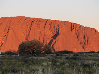 Fond de hotte en verre imprimé Brique Sunset on Uluru in Central Australia