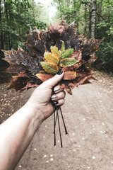 Hand holds the autumn leaves, close-up.