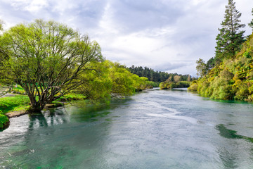 Aerial view of Waikato river New Zeland Wall mural