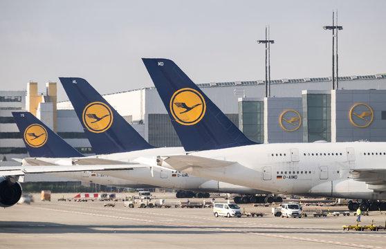 FRANKFURT,GERMANY - NOVEMBER 18, 2017: Lot of Lufthansa aircrafts at Frankfurt airport. Germany