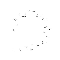 Frame with flying birds. Black swallows in circle. Bird trace. Freedom, romantic, dreams, lyric.