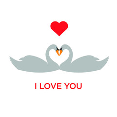 I Love You  under two swans with red heart