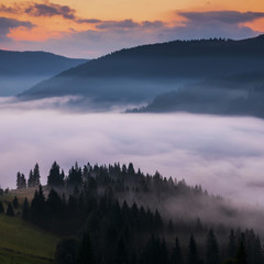 Tuinposter Ochtendstond met mist sunrise in mountains