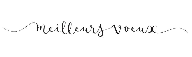 Calligraphie vecteur MEILLEURS VOEUX