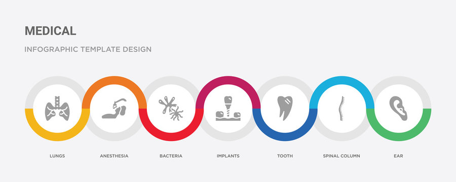 7 filled icon set with colorful infographic template included ear, spinal column, tooth, implants, bacteria, anesthesia, lungs icons