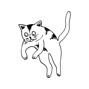 Cute hand drawn cat in jumping motion on white background. Vector adorable animals in trendy Scandinavian style. Funny, cute, hygge illustration for poster, banner, print, decoration kids playroom.
