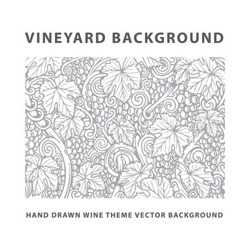 Vineyard. Vineyard engraving style drawing background and pattern. Grape, vine and leafs hand drawn vector illustration. Part of set.