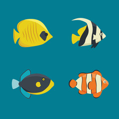 vector collection - four saltwater fishes