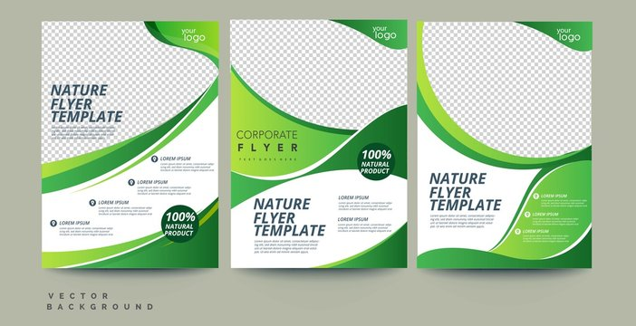 Vector eco flyer, poster, brochure, magazine cover template. Modern green leaf, environment design - Vector