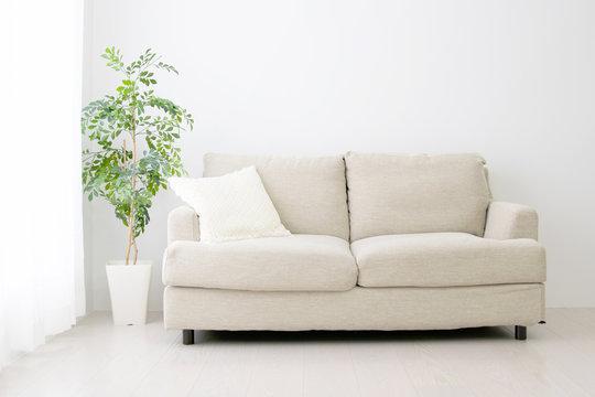 ソファと観葉植物