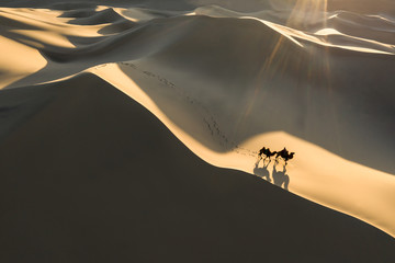 Aerial view from a drone of a nomad crossing massive sand dunes on bactrian camel caravan. Gobi desert, Mongolia. Wall mural