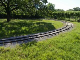 Wide shot of a railroad track inside a park