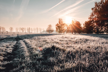 Foto op Aluminium Grijze traf. Calm and wonderful peaceful winter morning with frozen grass meadow and white nature and colorful ealry morning sunrise tones. Frosty white winter wonderland in the countryside with shadows