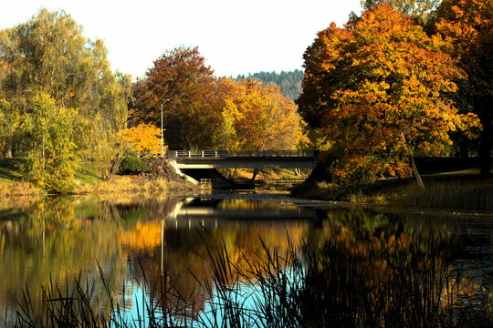 Bridge over lake on a fall day