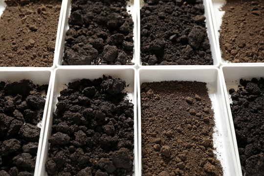 Containers with soil samples, closeup. Laboratory research
