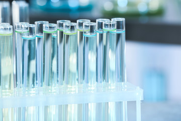 Fototapete - Test tubes with liquid samples for analysis in laboratory, closeup