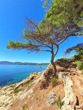 Splendide paysage méditerranéen de la Côte d'Azur en France depuis un sentier du littoral