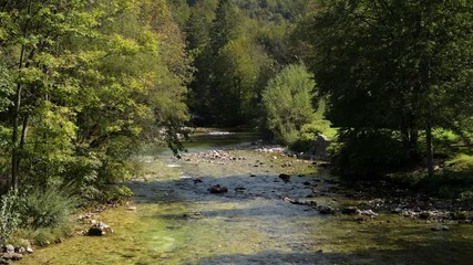 Fotomurales - Sava Bohinjka River in Triglav National Park Upper Carniola Region of Slovenia.