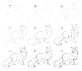 How to draw from nature step by step sketch of cute fox. Creation step-wise pencil drawing. Educational page for artists. School textbook for developing artistic skills. Hand-drawn vector image.