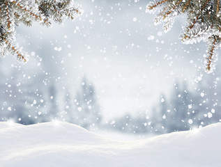 Snowfall in winter forest.Beautiful landscape with snow covered fir trees and snowdrifts.Merry Christmas and happy New Year greeting background with copy-space.Winter fairytale.