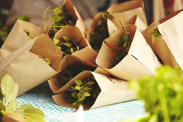 Fresh oregano packaged in small paper bags