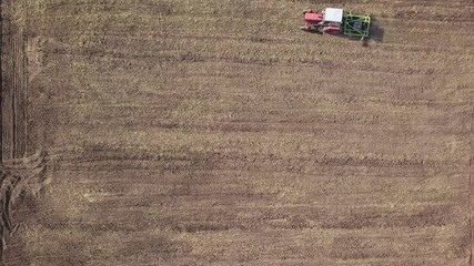 Wall Mural - Tractor cultivates agricultural field for sowing. 4K video, 240fps, 2160p.