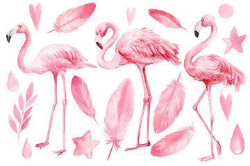 Canvas Prints Flamingo set of elements on an isolated white background, flamingos, pink feathers, stars, hearts, drops, watercolor illustration, hand drawing