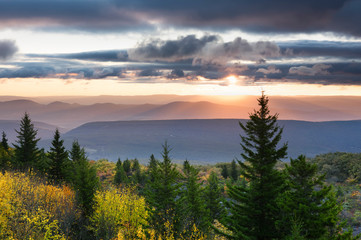 Wall Mural - Colorful Forest from Mountain Overlook in Fall