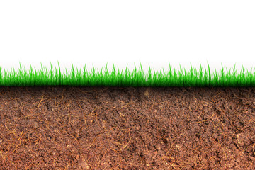 Abstract image of Cross section brown soil and green grass in underground.