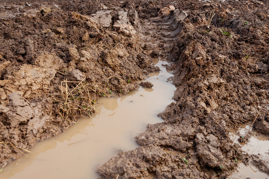 Tractor tire track in wet clay soil.