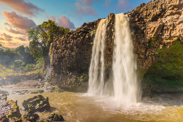 Wall Murals Waterfalls Blue Nile Falls Tis Issat in Ethiopia, Africa