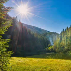 Beautiful forest lake in the mountains with blue water, morning light and shining sun