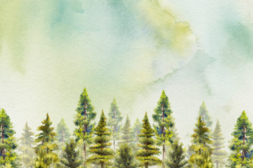 the woodland in watercolor