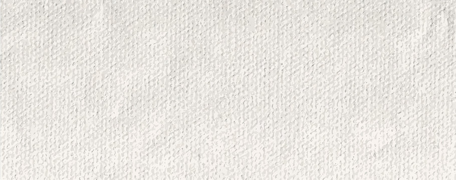 long white pound paper texture canvas vector