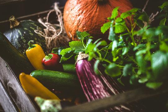 Organic vegetables on wood